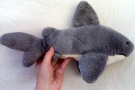 Toy: Shark Plushy